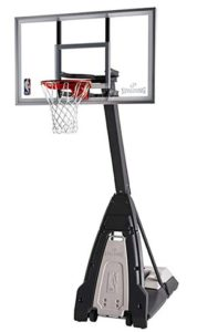 the beast basketball goal