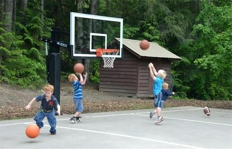 basketball net for home