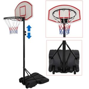 professional basketball hoop