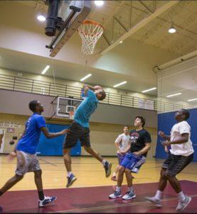 adult basketball net