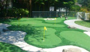 putt-putt backyard court design