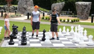 using the chess court